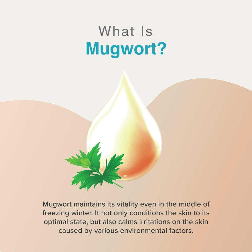 THE POTIONSMugwort Water Essence 20ml,MEMBER @ 5% IS JULINST RBT RM5 OFF POTIONS